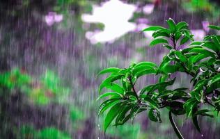 河南迎来酷热夏季,除了中央空调你更需要一套新风系统!
